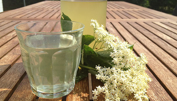 Elderflower cordial - Homemade elderflower cordial - Recipe